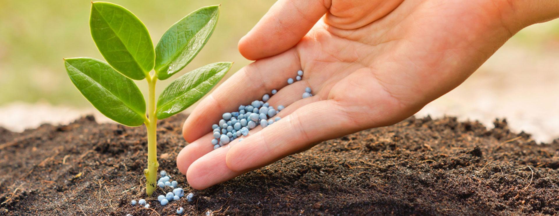 FG to slash fertiliser price