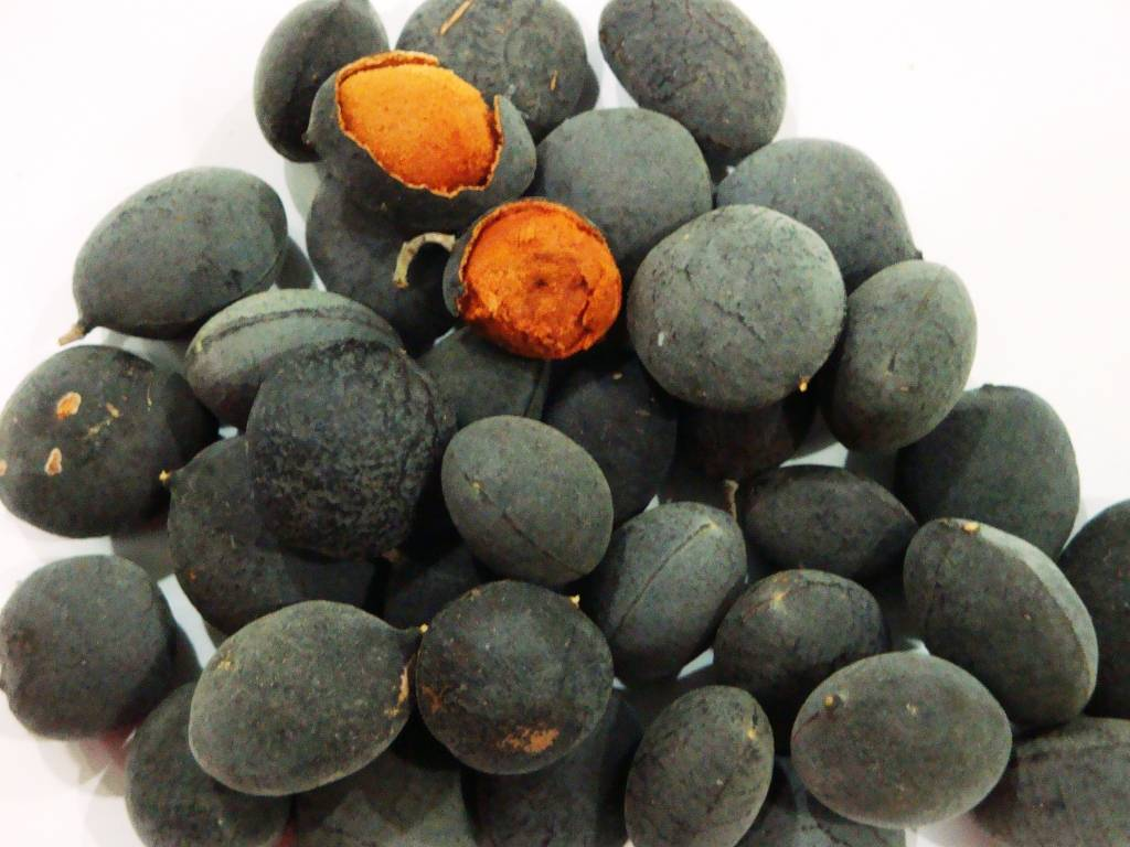 5 Health Benefits Of Black Velvet Tamarind (Awin)