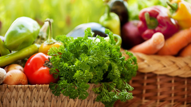 Organic Agriculture and Its Importance