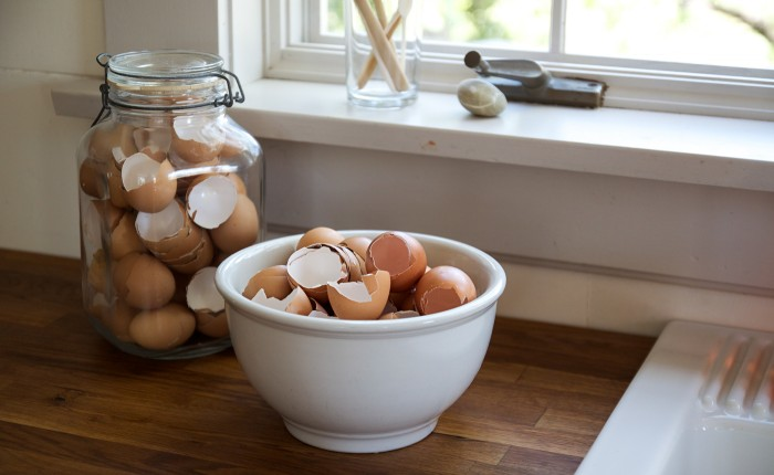 Egg Shells Are Highly Useful, Don't Throw Them Away