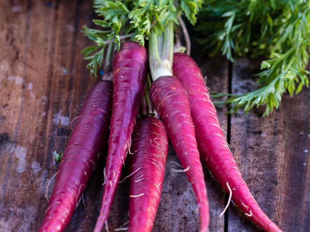 What Do You Know About Purple Carrots?