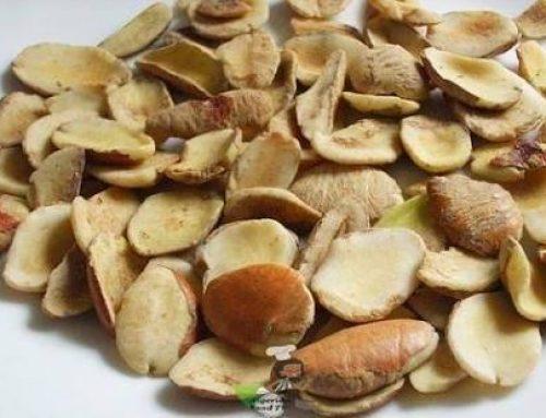 Irvingia/Bush Mango/Ogbono Seeds