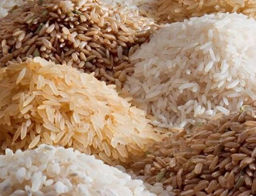 There May Be Rice Shortage In 2019 – Ogbeh