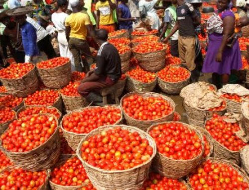 Ahead Of Ramadan, Prices Of Tomatoes, Pepper, Others Increase By 60% In Lagos