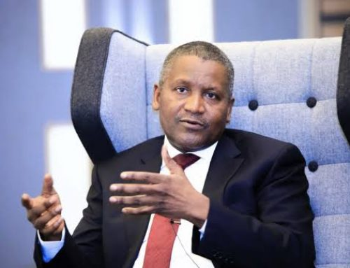 Dangote's Multi-Billion High-Tech Greenhouse Farm Starts Operation