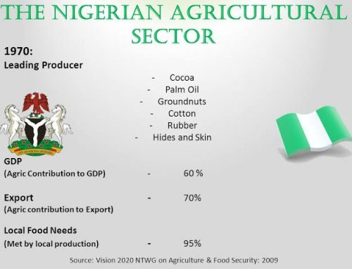 How Nigeria's Agricultural Sector Fared In 2019