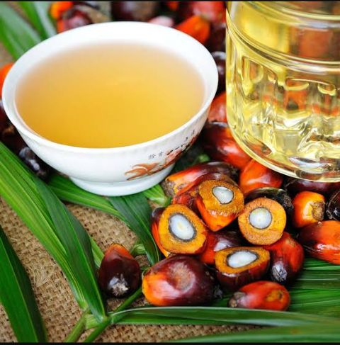 Investing In Palm Oil And Kernel Oil Production