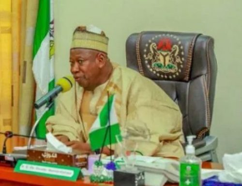 Ganduje Shuts Tiamin Rice Factory Which Produces 320 Metric Tonnes Daily