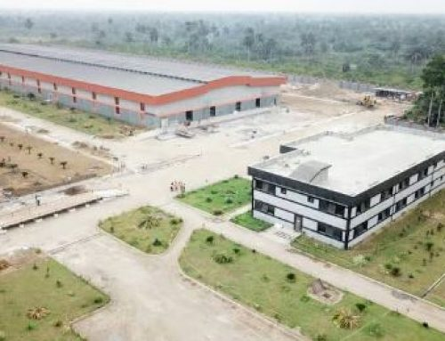 Spotlight On Akwa-Ibom Coconut Refinery, The Largest Coconut Refinery In Africa