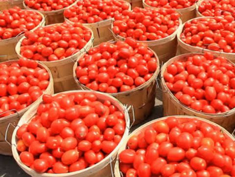 Prices Of Perishables Sour In Lagos Market