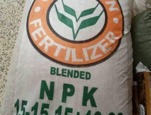 As Planting Season Begins, Farmers In Search Of Subsidised fertilizer, Seedlings