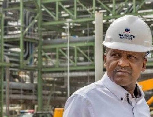 Dangote Urea Fertilizer Hits Nigerian Markets